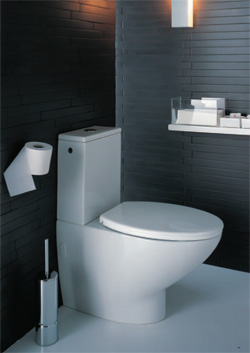 Merveilleux When You Are Remodelling Your Modern Bathroom Then The Toilet Is One Of The  Most Important Factors Involved. There Are Many Toilets That You Can Choose  From ...