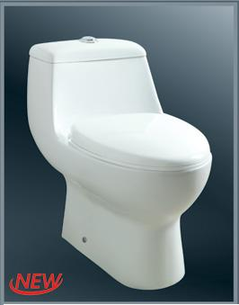 Save Water with Baden Dual Flush Toilet